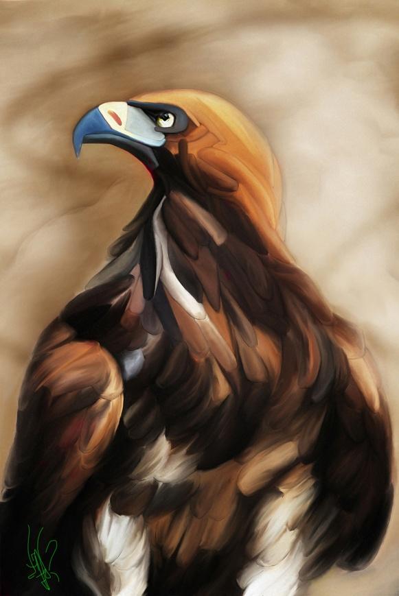 """""""Golden Eagle"""" by Diego Valdez"""