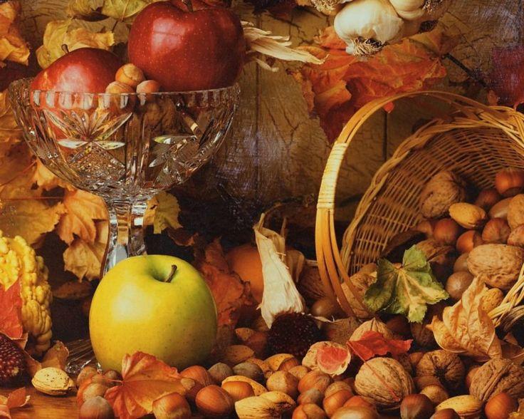 15 Inspirational Autumn Pictures