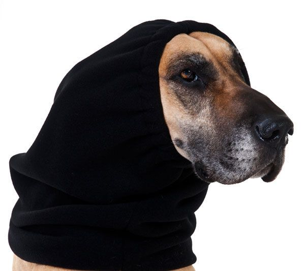 GREAT DANE Dog Hood by VoyagersK9Apparel on Etsy, $31.00