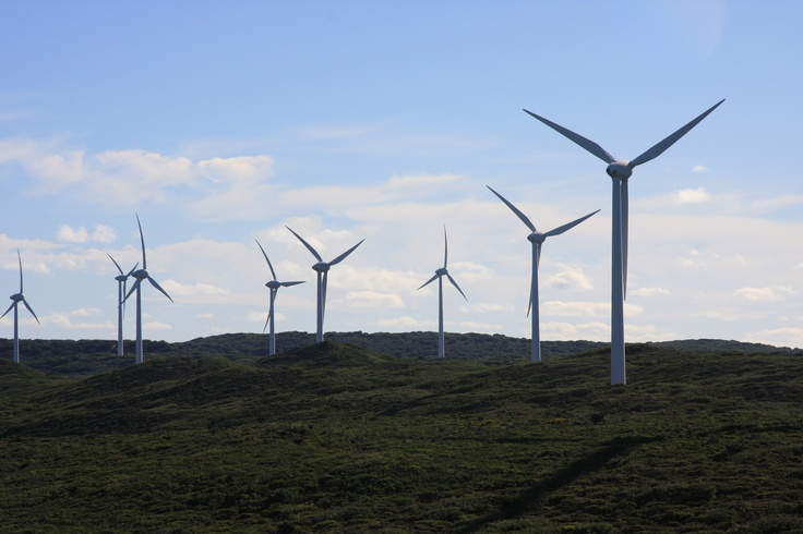 The Albany Wind Farm is the largest wind farm in Western Australia. The wind farm walk offers spectacular views of the twelve eco-friendly turbines along the Torndirrup peninsula. The turbines lower WA's greenhouse gas emissions by approximately 77,000 tonnes per year.