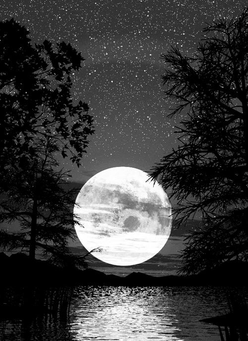 For every star in the sky is every time my mother makes me smile. For she is the moon shining bright in the sky of my life.