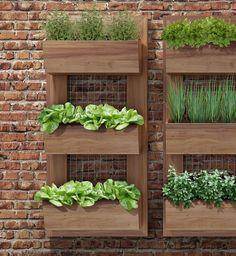 Painel Horta Vertical Simples 110x50  Para quem gosta de ter sua própria horta mas não tem espaço. Eis uma solução!