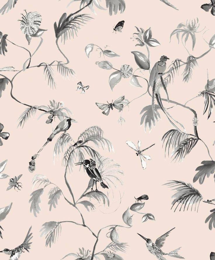 Paradijs van vogels behang roze/ zwart - De kleurrijke vogels vliegen bijna van het behang af, zo echt ziet het eruit. Door de roze achtergrond en donkere vogels ontstaat er een mooi contrast. Zelfs de kleinste details zijn op dit behang goed te zien. Leuk voor in de gang of zitkamer.