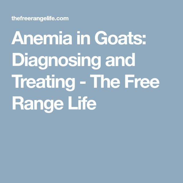 Anemia in Goats: Diagnosing and Treating - The Free Range Life