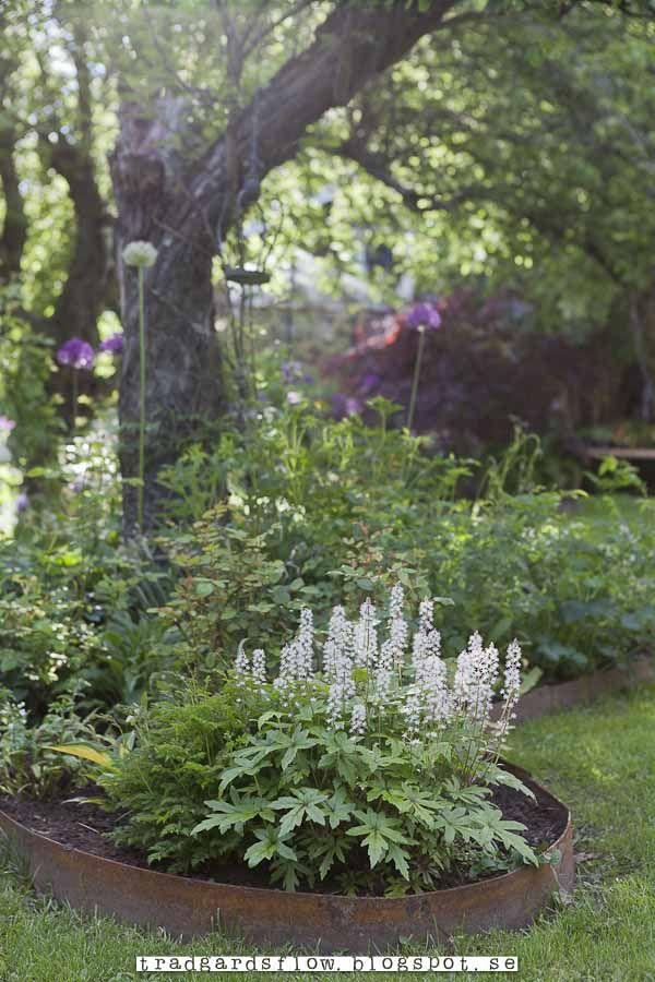 133 b sta bilderna om grace 39 s dream garden p pinterest for Green plants for flower beds