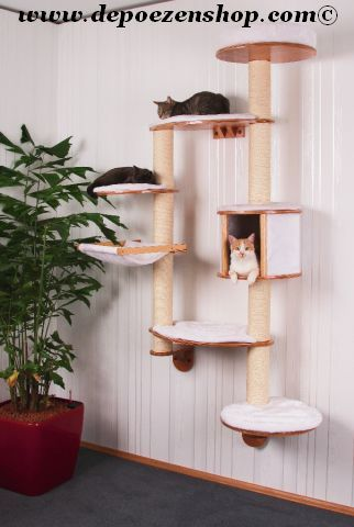 Scratching posts and Cathouses. - I need one of these!