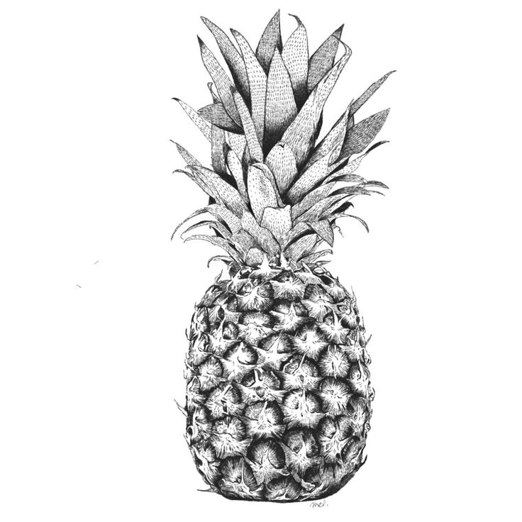 Image of Affiche Ananas