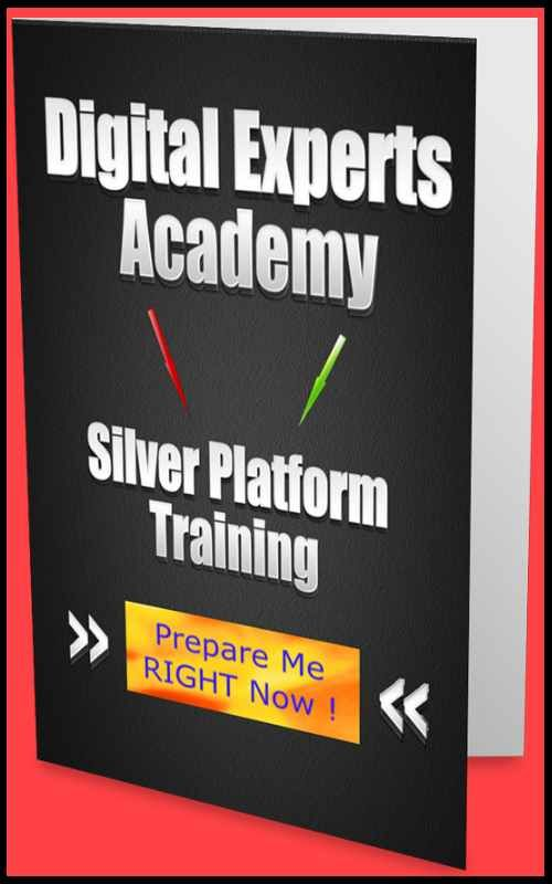 Communication and performance skills shown through the Digital Experts Academy Silver Level training.