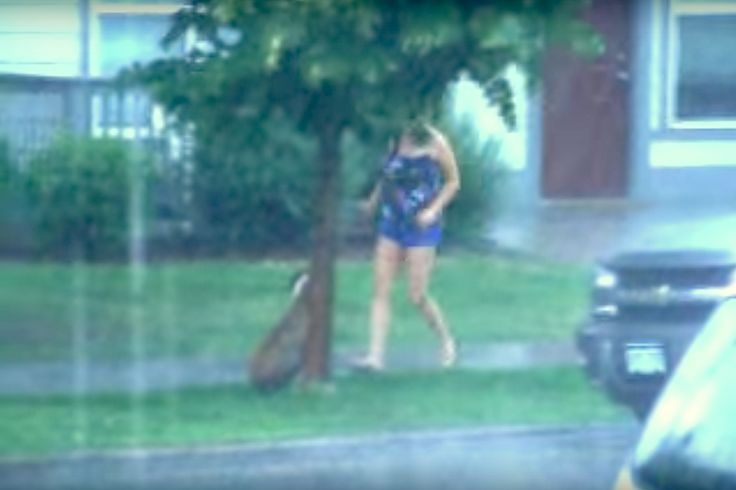 Heroic Neighbor Saves Abandoned Dog Tied To A Tree In The Pouring Rain - http://viralfeels.com/heroic-neighbor-saves-abandoned-dog-tied-to-a-tree-in-the-pouring-rain/