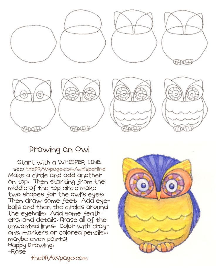 drawing an owltheDRAWpage.