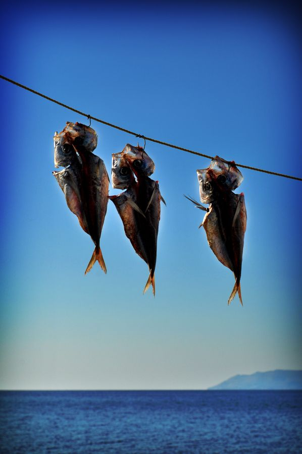 Summer Time in Mytilini, Greece