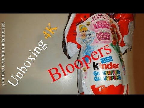Bloopers - Unboxing chocolate Easter egg Kinder Gran Sorpresa Disney Princess Palace Pets | Bloopers - Unboxing ovo de chocolate da Páscoa Kinder Grande Surpresa Disney Princess Palace Pets | 4k UHD 2160p.  Watch the youtube.com/animalsinternet video at https://www.youtube.com/watch?v=yRE9210D7PM&feature=youtu.be.  #unboxing #Easter #egg #Kinder  #Sorpresa #Disney #Princess #Palace #chocolate #food #delicious #gourmet.  subscribe like favorite comment follow share retweet repin email.