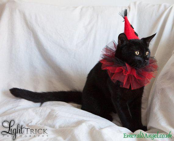 Pet Clown Hat Costume Halloween by emeraldangel on Etsy, $20.00