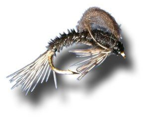 29 best cool flies images on pinterest fly fishing flies for Chicago fly fishing outfitters