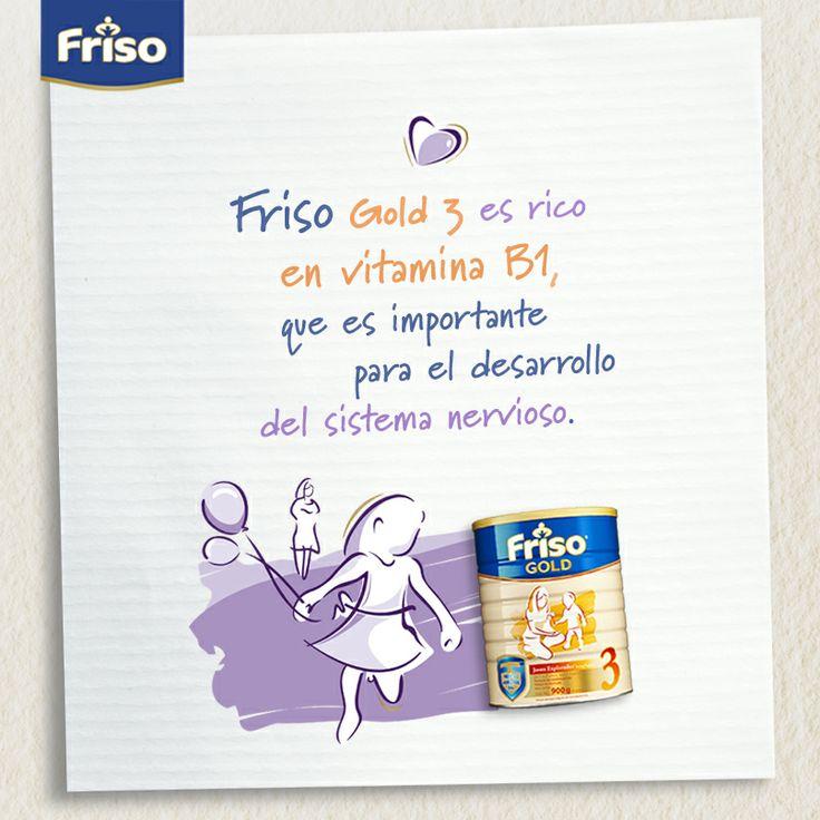 Friso Gold 3 es rico en vitamina B1, que es importante para el desarrollo del sistema nervioso.