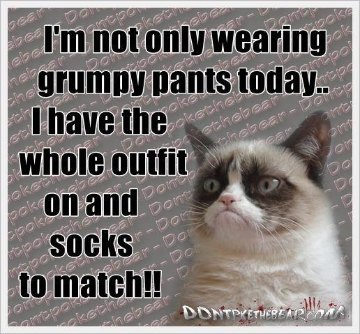 Afbeeldingsresultaat voor grumpy cat quotes