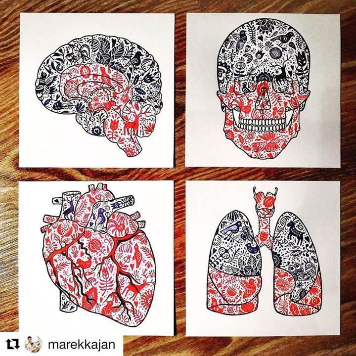 """Koláž """"Anatómia na ľudovú nôtu"""" je konečne hotová.  úžasné spojenie od @marekkajan  ...... #praveslovenske #goodideaslovakia #slovakia #slovensko #folk #folkart #folkstyle #heart #brain #lungs #head #ornaments #folkornaments #slovakfolklore #tradicie #traditions #traditional #art #drawing #draw #medicine"""