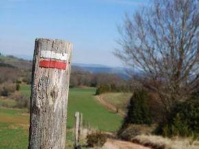 Idées de balades en Aveyron: Randonnées pédestres, équestres, à ski ou en raquettes ; circuits en voiture, en VTT, ou en bateau ; canyoning ou encore via…