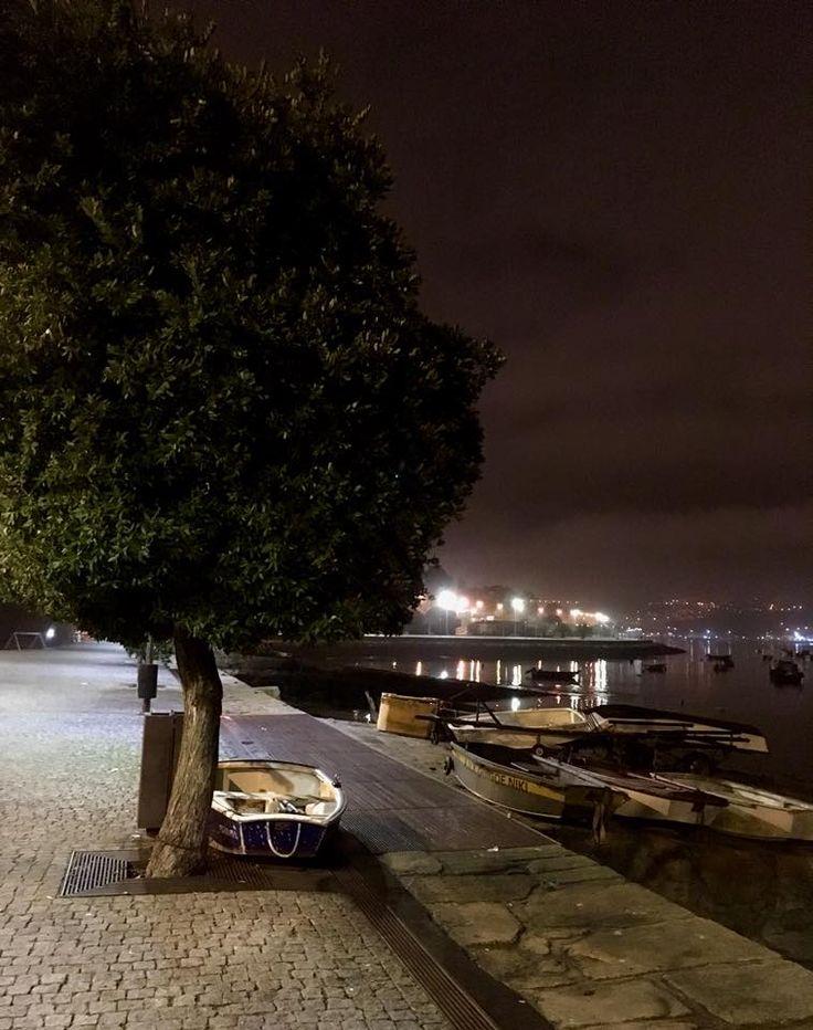 Cantareira à noite - f. Olga Almeida