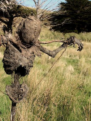 """Scarecrows...some people know how to do them right."" - Ok, I don't want this in my house... ever. But it is too awesome not to pin."
