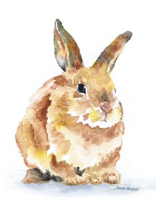 Image Result For Easy Watercolor Painting Animals By Candy Bunny