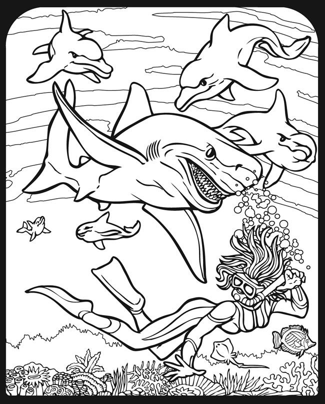 My Kids Are Currently Obsessed With Sharks So They Will Love This Shark CraftColoring Book PagesShark