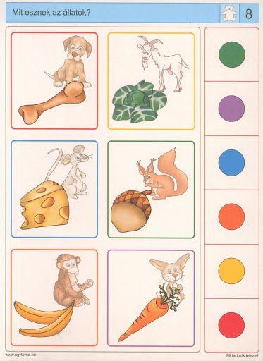 Piccolo: beer kaart 8 oplossing