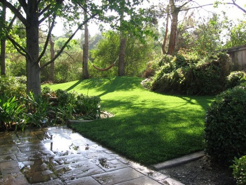 grass turf lawn  ~ doesn't need to be watered...or mowed and it always looks green and fabulous...who wouldn't want this.