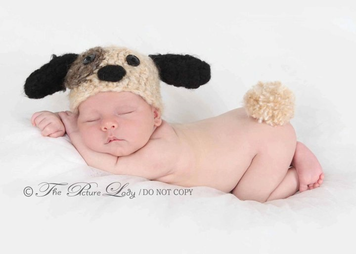 Louie. Fuzzy Puppy Hat and Fluffy Tail Baby (0-3 months) Photo Prop. $26.00, via Etsy.