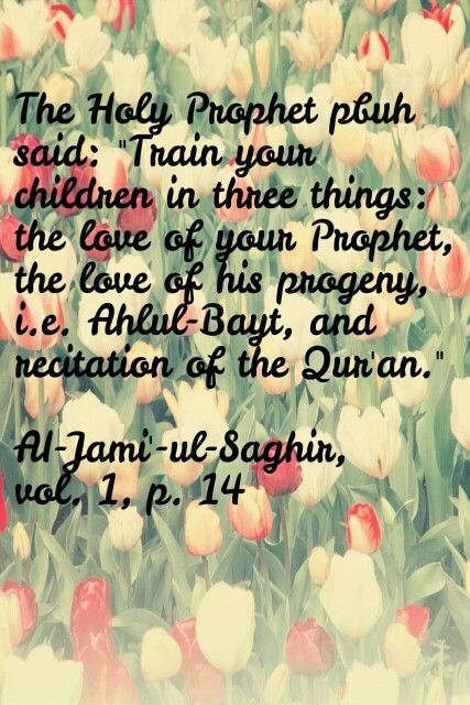 1000 images about Islam on Pinterest Ali Allah and Imam ali quotes