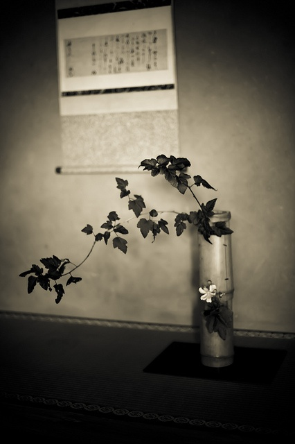 "Ikebana, ""Ikebana"", flower arrangement in Japan"