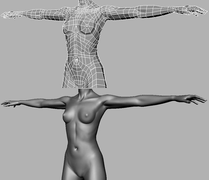 38 Awesome 3d body topology images