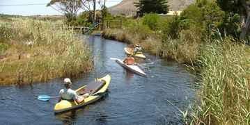 Otters Creek, Pringle Bay