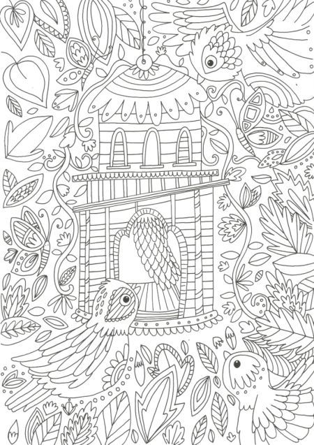 Bird House By Angelika Scudamore Adult Coloring PagesColoring BooksColouring