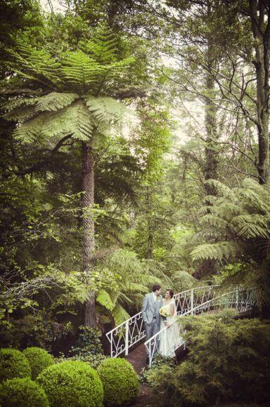 Mount Dandenong Ranges Wedding Inspiration. Captured by Melbourne Wedding Photographers StudioMax Photography x