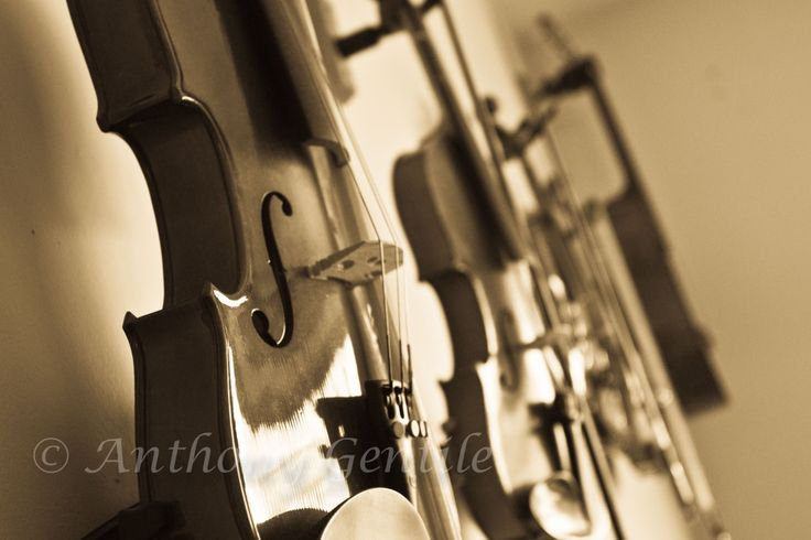 Music is on the wall  #violins #fiddle #music #anthonygentilephotography