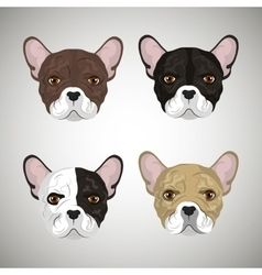 Purebred dogs faces icon set Royalty Free Vector Image