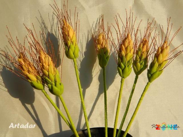 Spice de grau decorative
