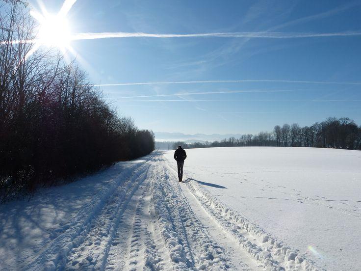 Welche Vitamine sind im Winter besonders wichtig? - Teil 1