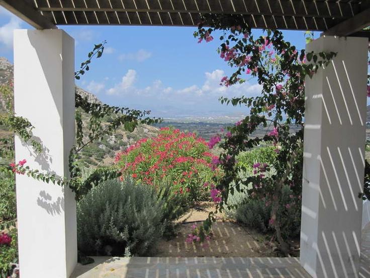 villa potamia naxos