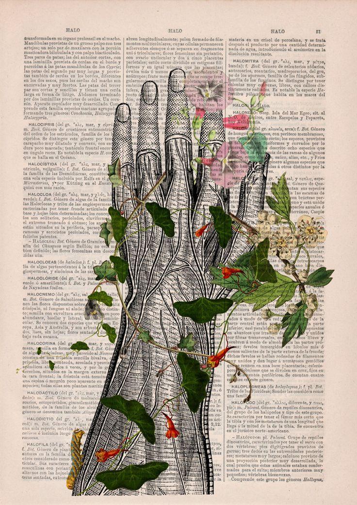 Uma empresa espanhola aproveita as folhas antigas de dicionários ilustrando-as com desenhos florais e mixando com imagens detalhadas do corpo humano.