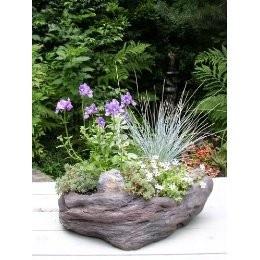 Rock planter idea
