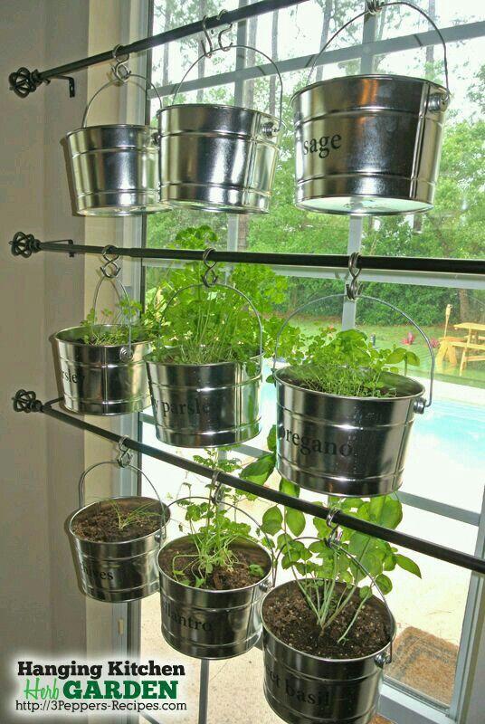 Indoor garden for the winter months