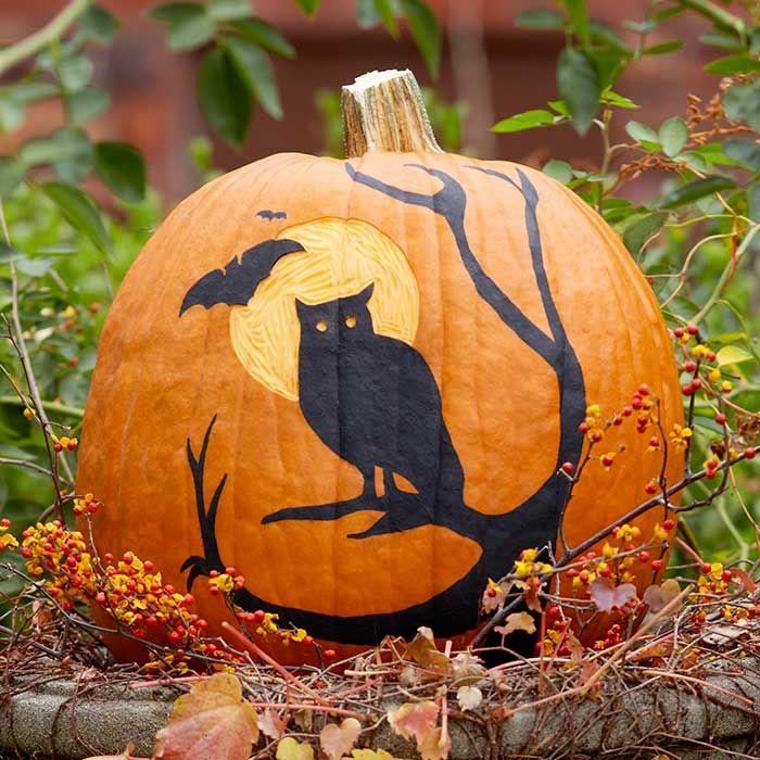 17 Best Images About Painted Pumpkins On Pinterest