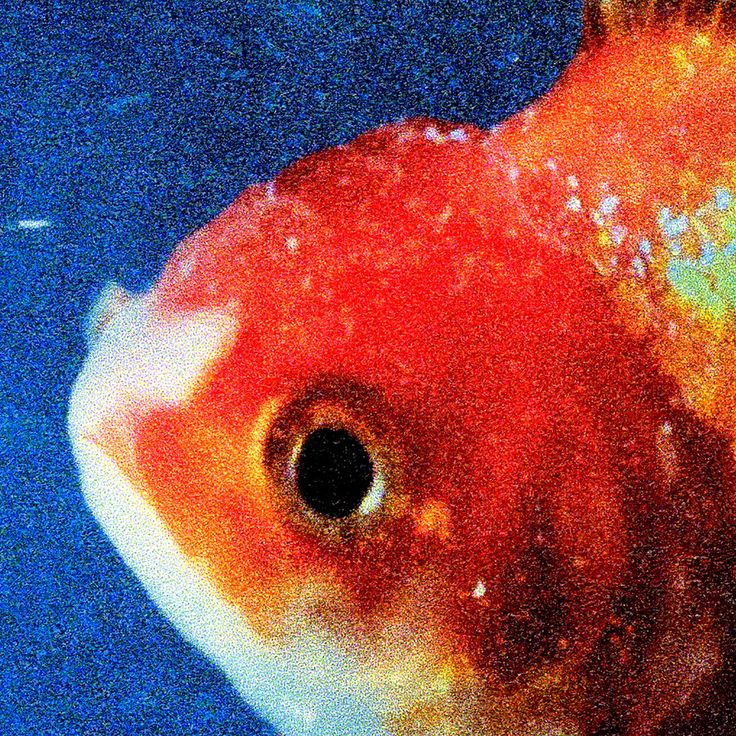 Vince Staples « Big Fish Theory »