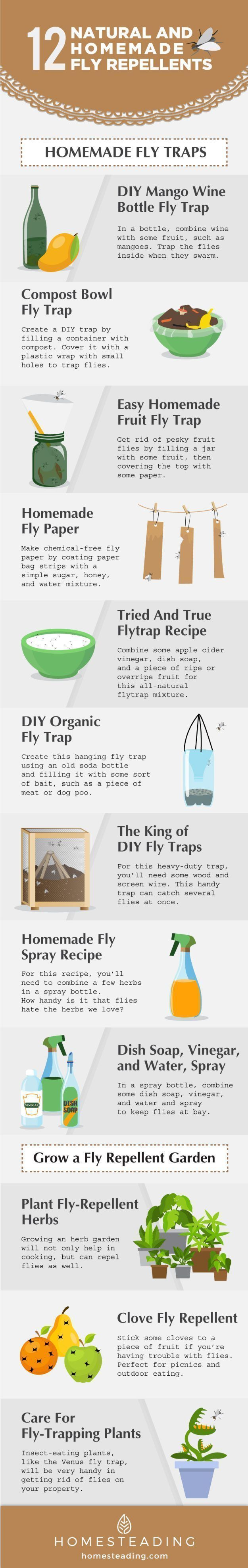 If you know of the unhealthy and even dangerous long-term effects of chemical pest repellent, you won't think of using them again. While there's no one ultimate solution to getting rid of flies, you can use these methods as multiple strategies to combat these pests. Most importantly, you now know how to get rid of flies naturally and safely!
