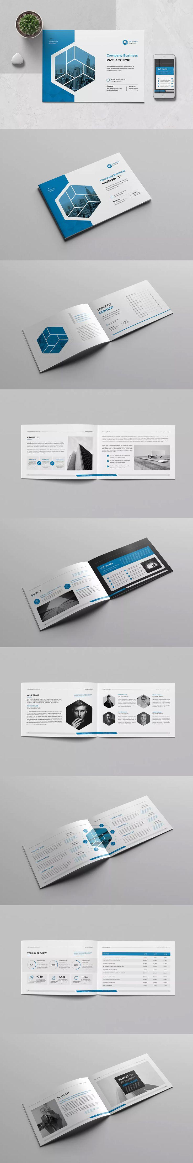 Company Profile Template 16 Pages INDD InDesign A5