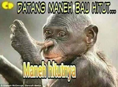 Koleksi Gambar Komentar Facebook Lucu Gokil Abis Terupdate