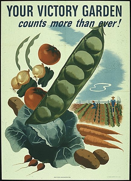 World War II poster. Victory Gardens were small gardens Americans where encouraged to grow in their backyards to increase food production.