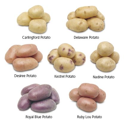 Potatoes good for weight loss crmnews for Different ways to cook russet potatoes